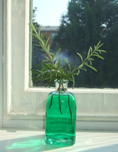 green_bottle