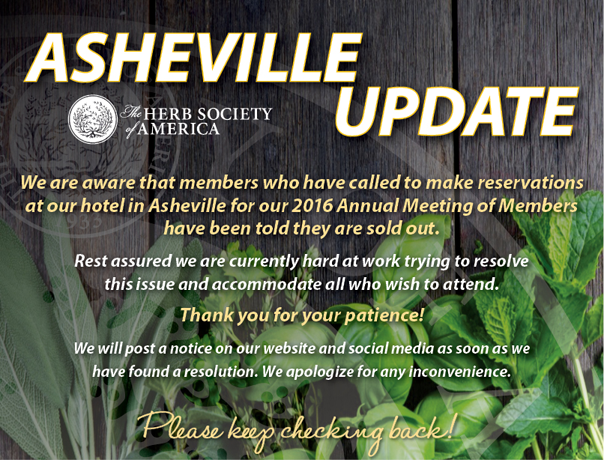 Asheville-Update - hotel