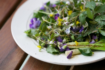 Foraging salad