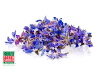 Edible flowers borage
