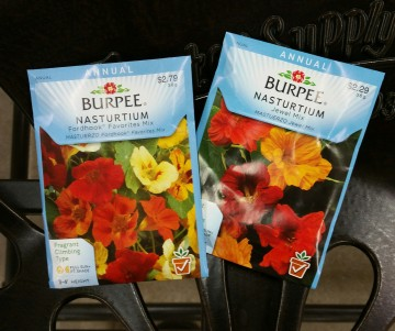 Nasturium seed packets