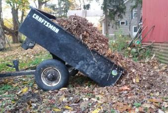 dumping-leaves