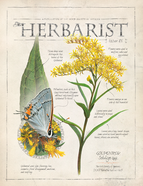 Top Herb Publication – The Herbarist 2016 – ComingSoon