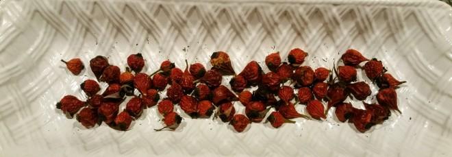 rose-hips