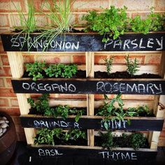 vertical-garden-palatte