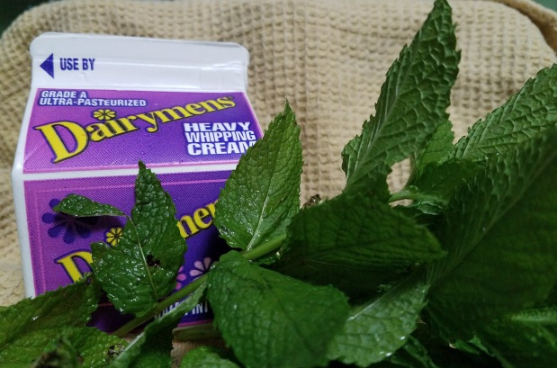 7 Things to Do with Mint