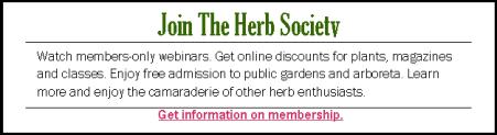membership ad 2