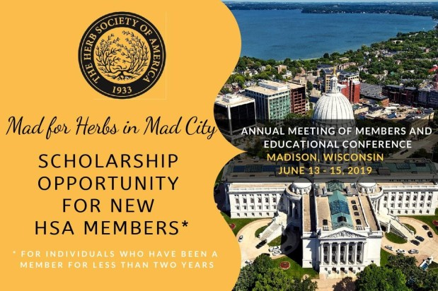 2019 EdCon Scholarship Available to New HSAMembers