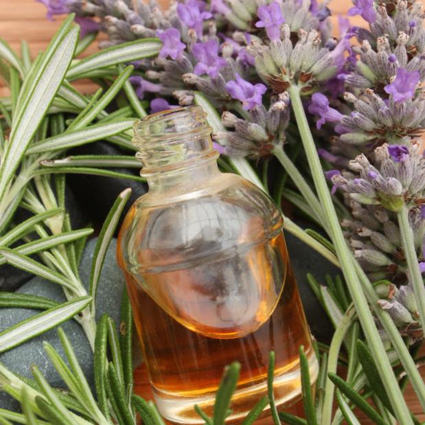 Herbs for SpringEquinox