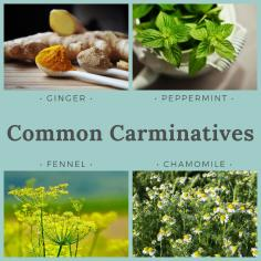 Blog carminatives
