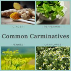 Blog carminatives