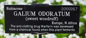 Webb plant label