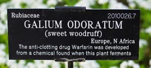 Webb plant label
