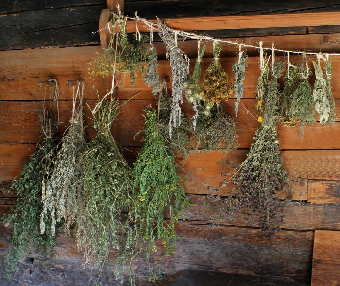 herbs-drying from thegardeningcook dot com