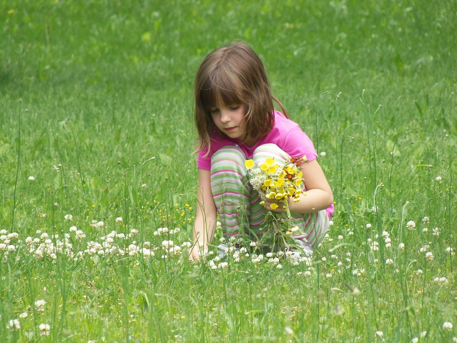 picking-flowers-391610_1920