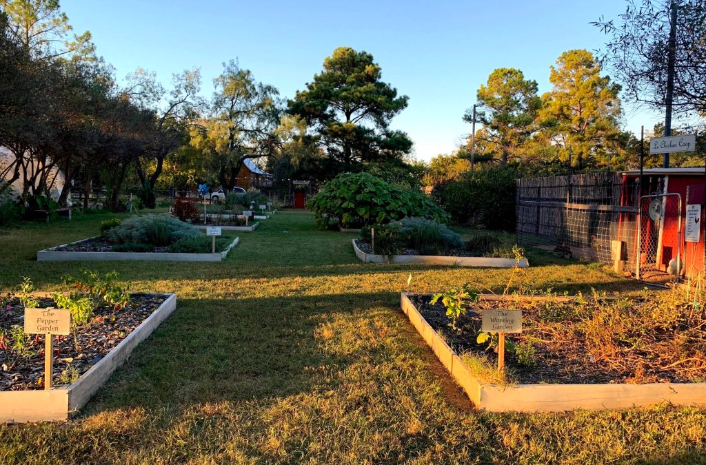 URBANherbal garden