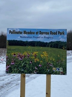 Darrow Road Park projected meadow sign