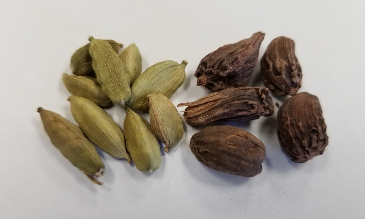 green and black cardamom seed pods