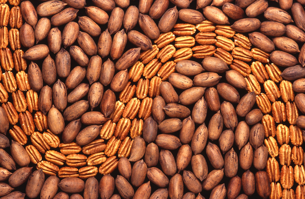 artistic display of pecans and peanuts